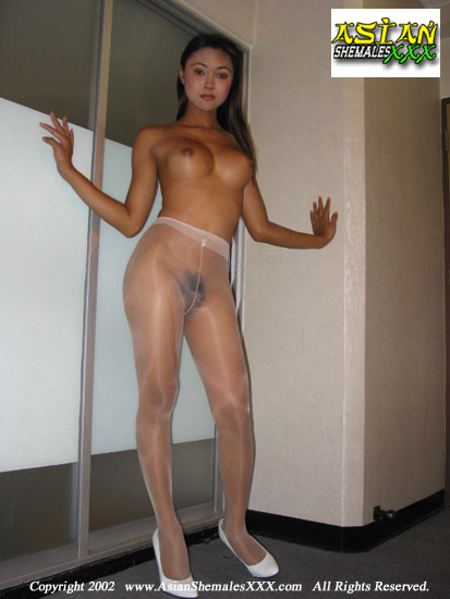 Asian Shemale Pantyhose 104