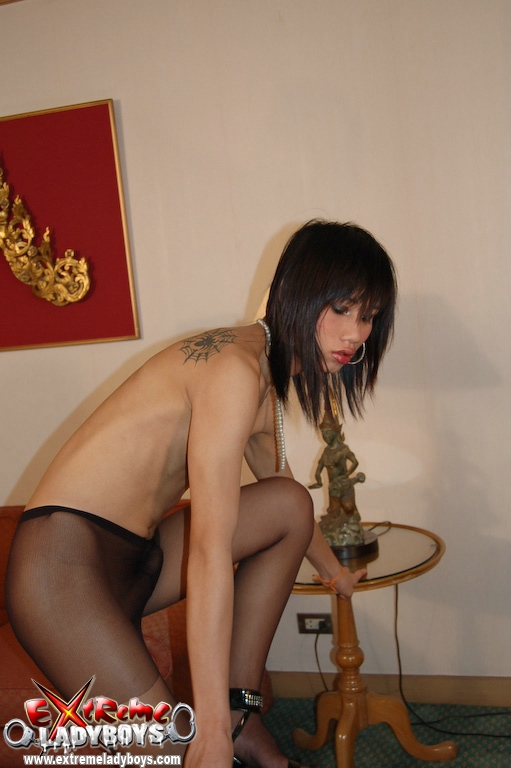 Shemale pantyhose sex picture free